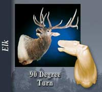 Elk - 90 Degree Turn