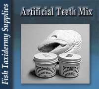 Artificial Teeth Mix