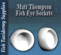 Matt Thompson Fish Eye Sockets