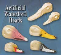 Artificial Waterfowl Heads