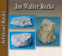 Joe Walter Rocks
