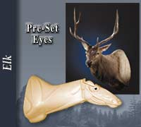 Elk - Pre-Installed Eyes