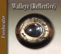 Walleye - Reflective Pupil