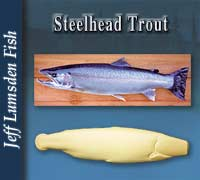 Steelhead Trout by Jeff Lumsden