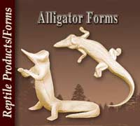 Alligators Forms