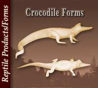 Crocodile Forms