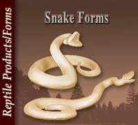 Snake Forms