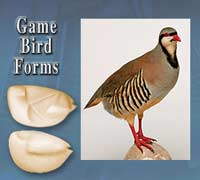 Game Bird Forms