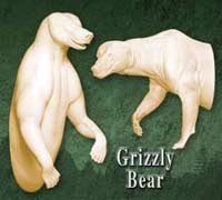 Grizzly Bear Half Life Size