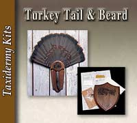 Turkey Tail - Beard Kits