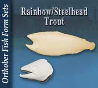 Rainbow - Steelhead Trout