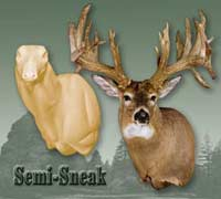 Whitetail - Semi Sneak