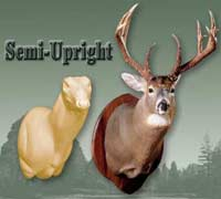 Semi Upright