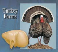 Turkey Forms