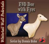 E9D Doe Series - With Eyes