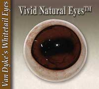 Van Dyke's Vivid Natural Eyes