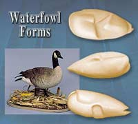 Waterfowl Forms