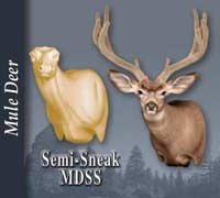 Mule Deer - Semi-Sneak