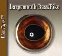 Largemouth Bass - Pike Eyes
