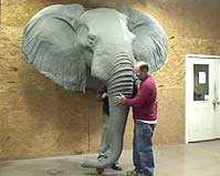 How to Hang and Assemble a Reproduction Elephant Head