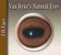 Natural Eyes - Elk