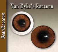 Van Dyke's Raccoon Eyes