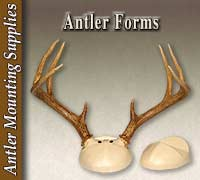 Antler Forms